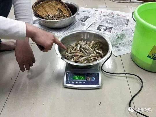 两男子禁渔期电鱼被判刑 自愿参加半年公益活动