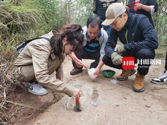 《澳洲新运8娱乐》_宜宾乡村网红报料:我家发现恐龙脚印