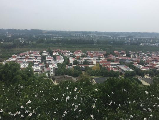 四川乡风文明建设如何开展?这几个村的经验可资借鉴