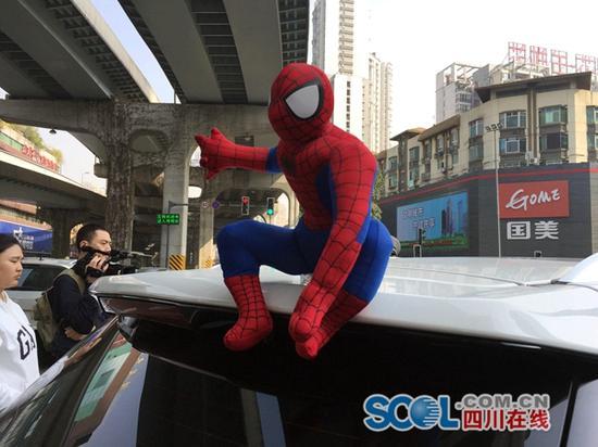 坐在车顶的蜘蛛侠 成都交警蜀黍喊你们快下来!