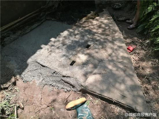 已经做了排危处理的沼气池,被水泥封严了