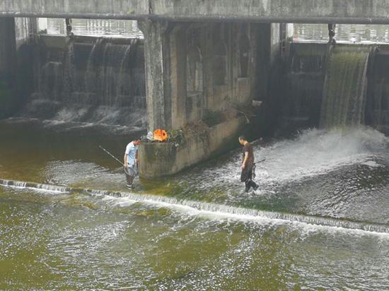 旌湖社区:男子下河捞鱼工作人员劝阻