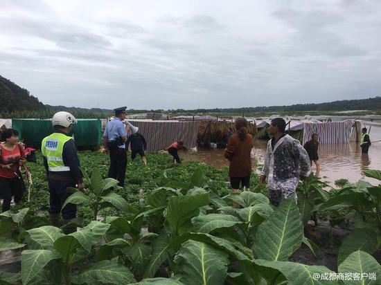 村民洪水中抢收烟叶吓坏民警 调来船只帮忙抢回8000多斤烟叶