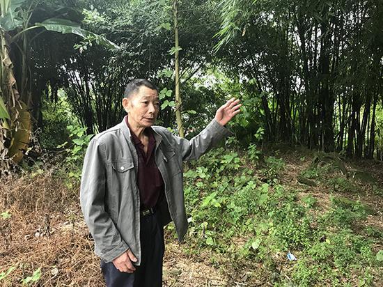 自贡:找到疑似32年前被抱走的超生女婴 将进行DNA鉴定