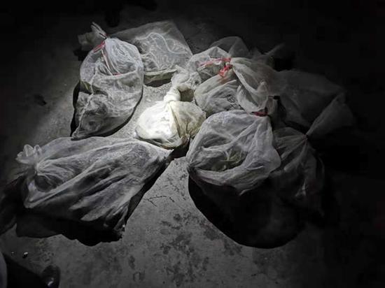 面包车内藏254条蛇 巴中破获今年最大贩卖野生动物案