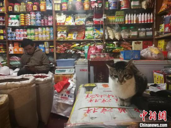 探访武汉华南海鲜批发市场:大部分商户正常营业