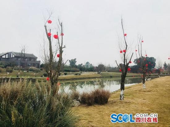 成都首个国家湿地公园开园啦!春节到新津白鹤滩踏青