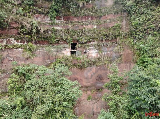 ↑四川宜宾深山悬崖现洞穴