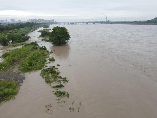 ▲8月12日,青衣江夹江段迎来超警洪峰。图据ICphoto