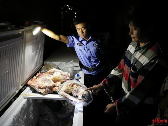 艾某某家的冰柜的野动物死体
