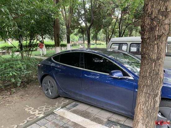 ▲河道一侧的停车位上有车辆侵占绿化带