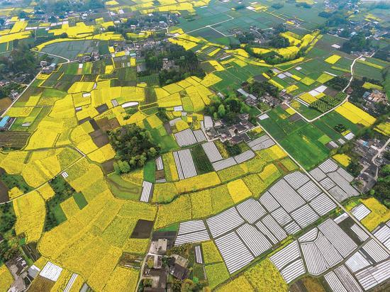 2021年都江堰灌区将确保1130万亩灌溉面积