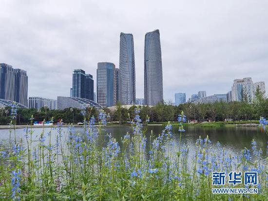图为成都高新区金融城。 新华社记者 李倩薇 摄