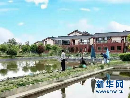 成都双流黄水镇:乡村振兴 小龙虾撬动大产业