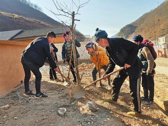 3月21日,腾地村易地扶贫搬迁安置点房前,村民合力栽种桃树。本报记者 王代强 摄
