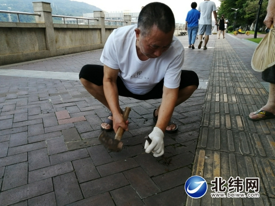 路上钉子存隐患 热心市民来清理