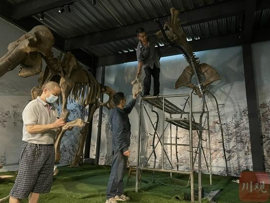 复活恐龙:从石头里凿出2亿年前的故事