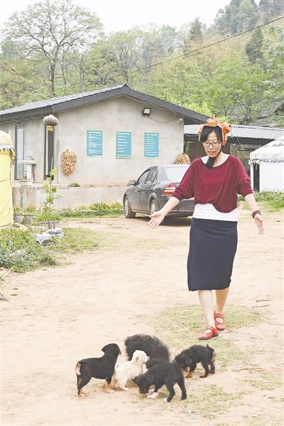 白秀娜养了很多只小狗 摄影记者 张士博
