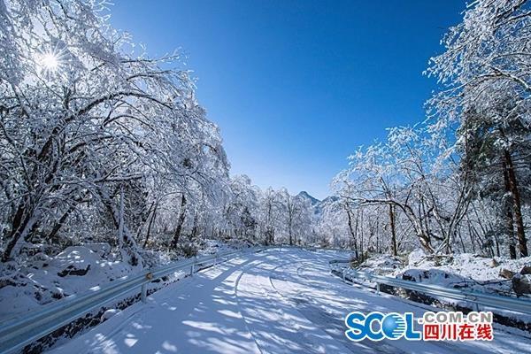 春节别去了!雅安市天全县喇叭河景区暂时闭园