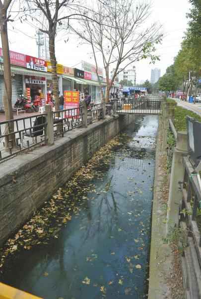 2月17日,成都国槐街的两条水渠又脏又臭。