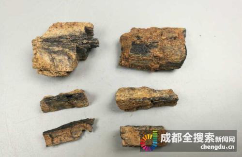 蒲江铁溪村冶铁遗址使用的燃料—木炭