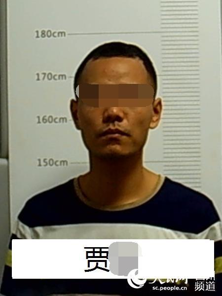 男子赌博欠下百万巨债 建色情网站获利被抓