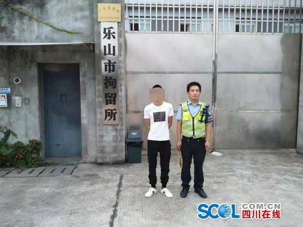 拘留5天罚款1000元!成乐高速一男子无证驾驶被查