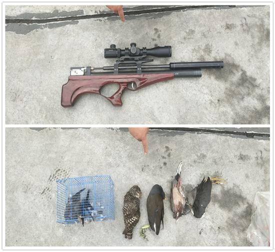 """遂宁三男子买气枪打鸟遇民警 自己也撞到""""枪口""""上"""