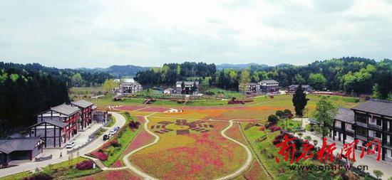 八尔湖镇纯阳山村风貌。