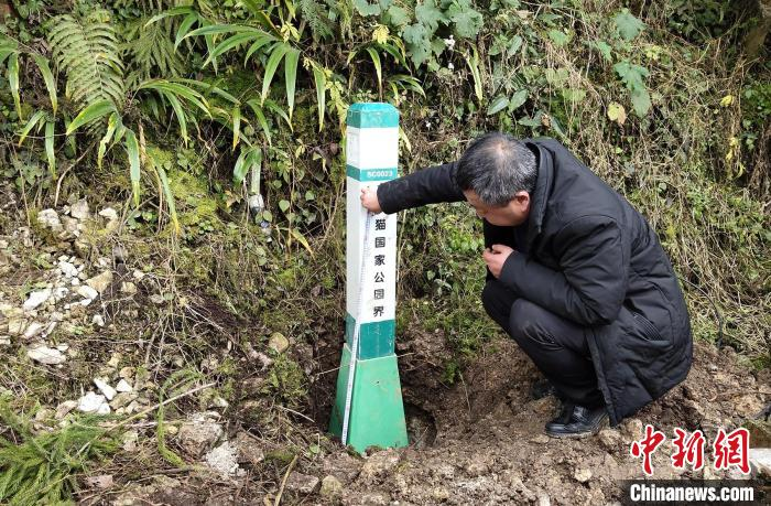 大熊猫国家公园眉山片区瓦屋山区域埋设界桩现场。 洪雅县委宣传部供图