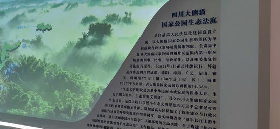 为啥要单独成立成都互联网法庭和四川大熊猫国家公园生态法庭