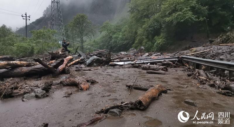 四川汶川遭遇强降雨 中国大熊猫保护研究中心大熊猫无伤亡