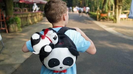 假笑男孩来成都看大熊猫 粉丝:终于和活表情包合影了