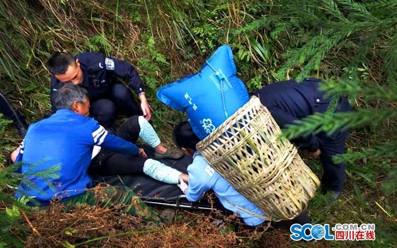 四川什邡一村民上山干農活被野蜂蟄傷 已脫離危險