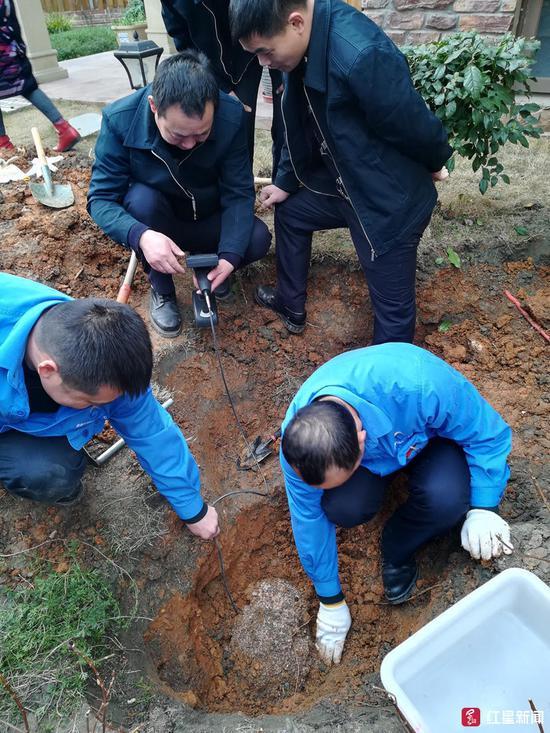↑挖掘白蚁巢穴