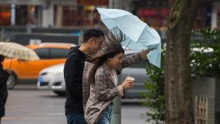 注意!风来了!今天四川盆地大部有4-6级风