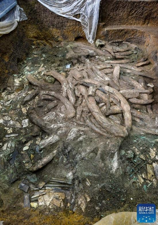 """↑这是9月2日在四川德阳广汉市三星堆遗址拍摄的7号""""祭祀坑""""。新华社记者 王曦 摄"""
