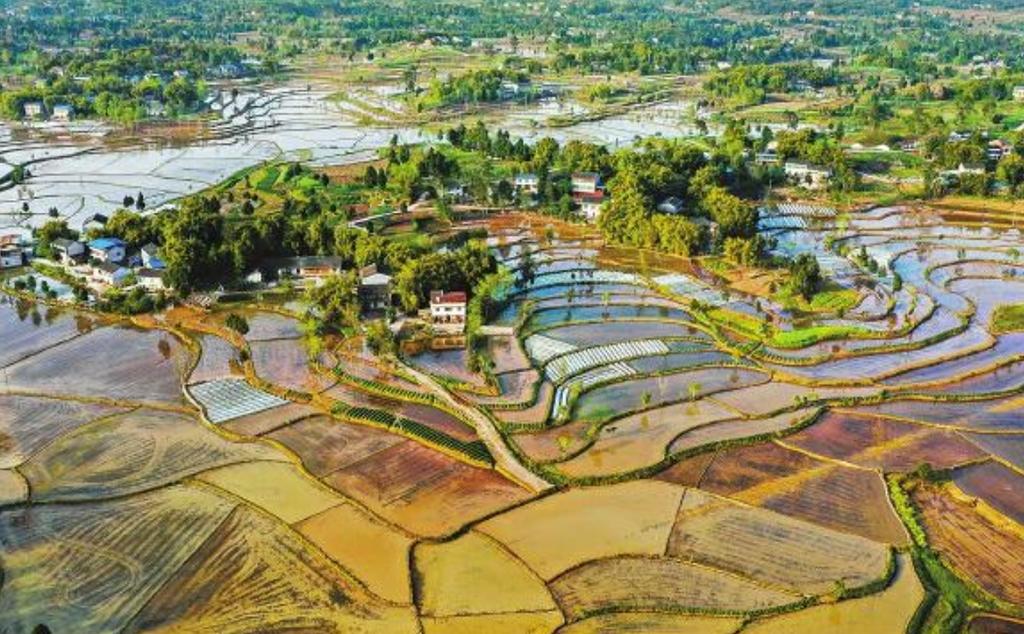 3月27日,广安市广安区花桥镇蓄满春水的稻田。 张国盛摄(视觉四川)
