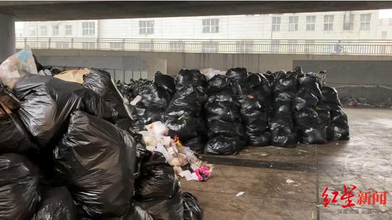 """高架桥下""""躲""""个垃圾堆放点 垃圾堆了一周也没来清"""