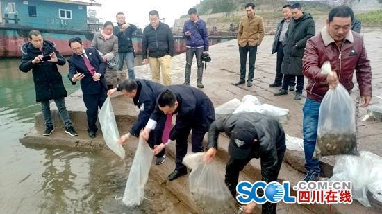 宜宾南溪区执行首例渔业违法生态补偿案