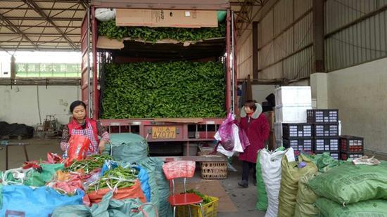 干辣椒价格同比上涨20% 专家:明年椒农仍需理性种植