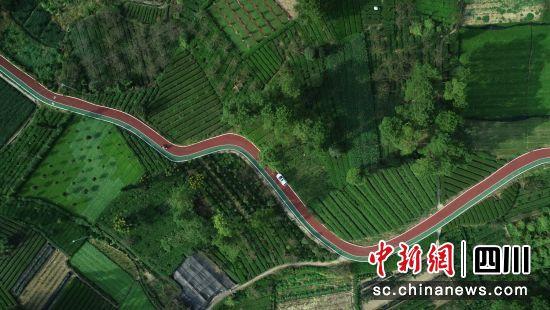 图为四川省农村公路。(四川省交通运输厅供图)