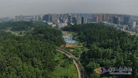 厉害了!乐山这两个公园拟命名四川省重点公园