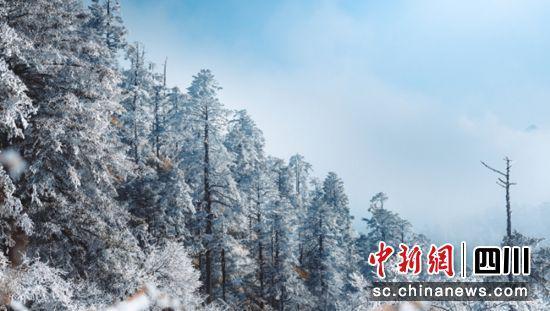 景区雪景(天全县委宣传部 供图)