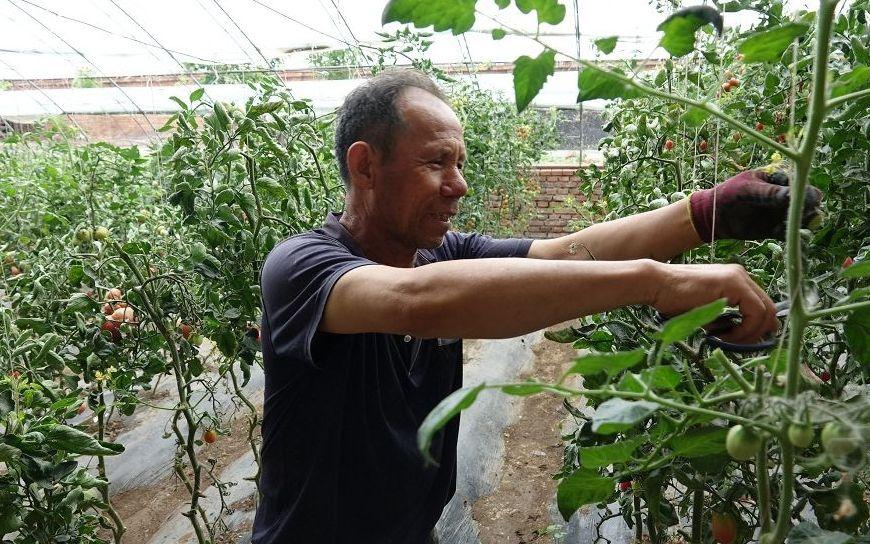 雷竞技app苹果版:到2022年全省培育家庭农场5000家以上