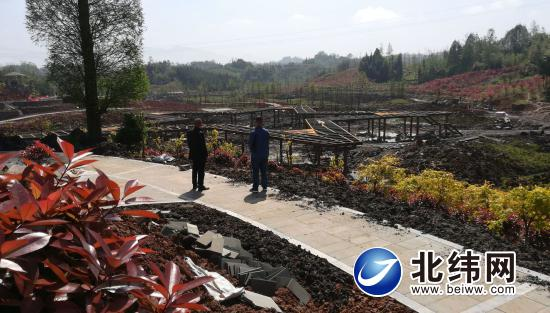 二期项目正在建设的五星栈道和彩叶林