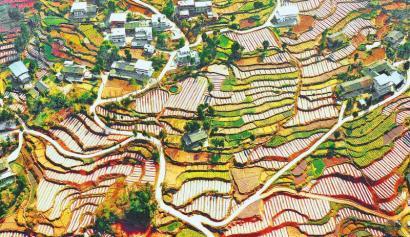 重塑乡村经济和治理版图 巴中两项改革多点发力
