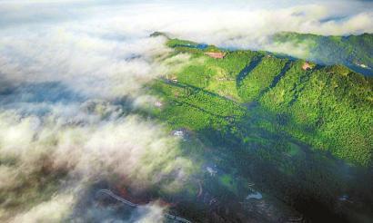 四川累计退耕面积超过两个自贡市大小