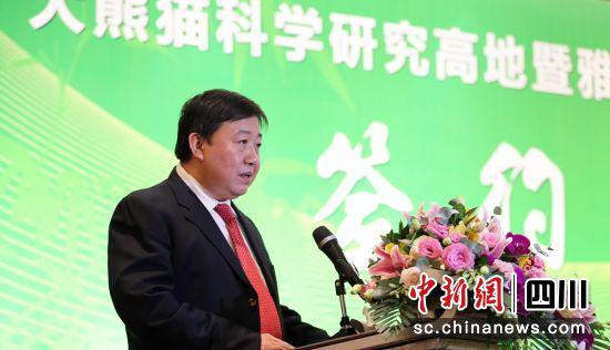 大熊猫国家公园管理局局长向可文发言(钟欣 摄)