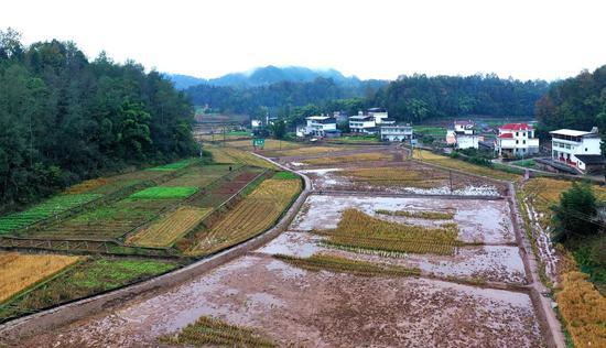 南江县完成高标准农田建设项目89个,整理规模达8.5万余亩